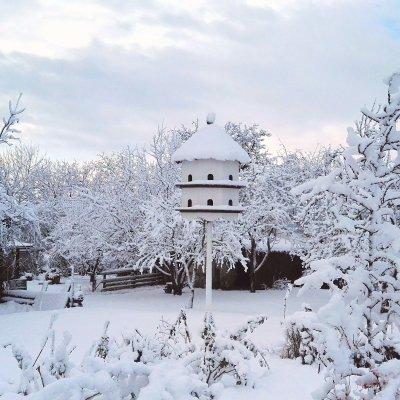 Realizace experimentální zahrady Tlumačov - Zima