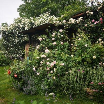 Realizace experimentální zahrady Tlumačov
