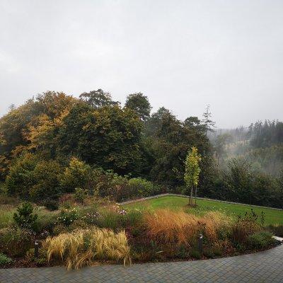 Trávník - Realizace zahrady Češkovice
